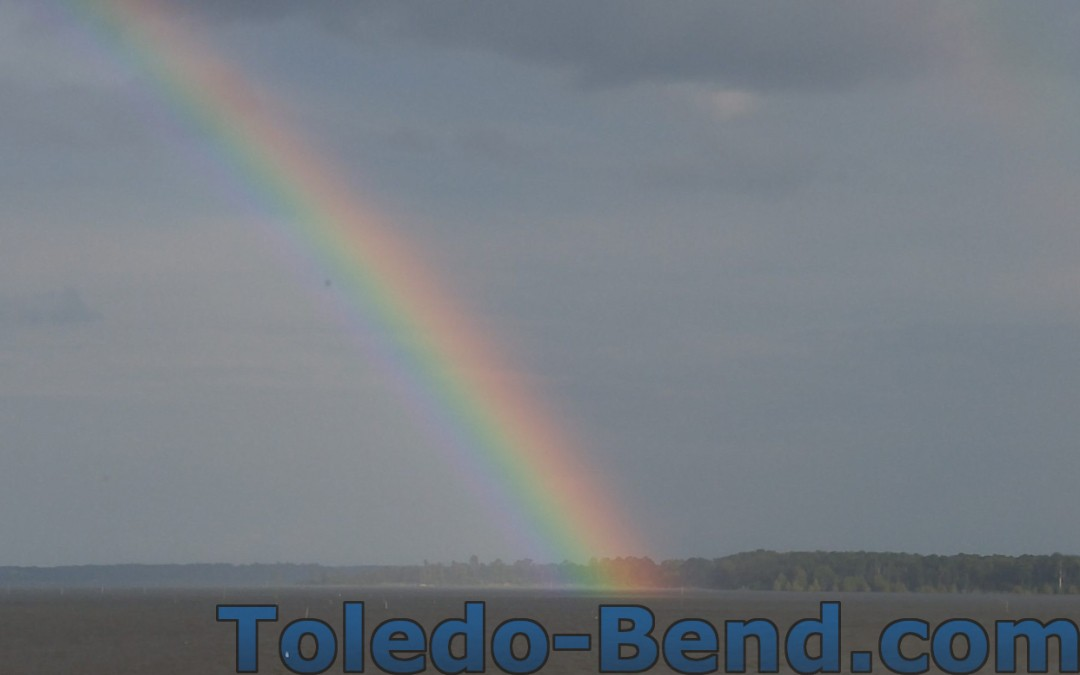Rainbow Toledo Bend Lake