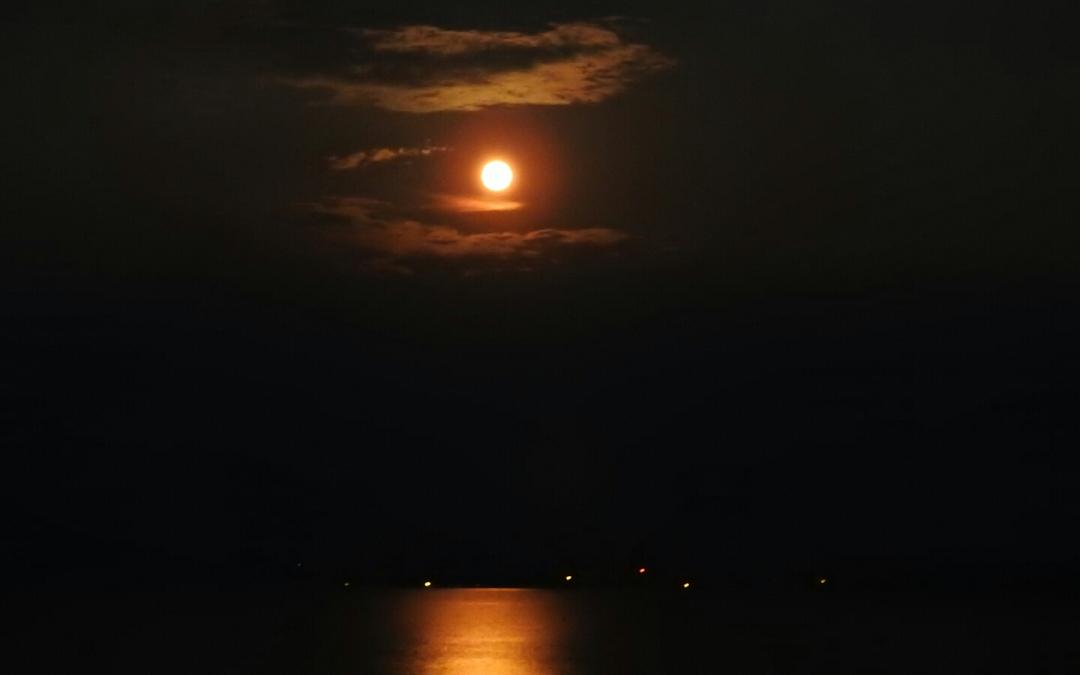 Moon Over Toledo Bend Lake