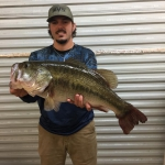 Wesley Miller huge largemouth bass Toledo Bend!