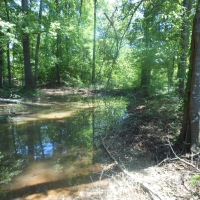 Waterfront Lot 5, Cypress Pointe Subdivision!