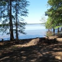 Paradise Found at Toledo Bend Lake!